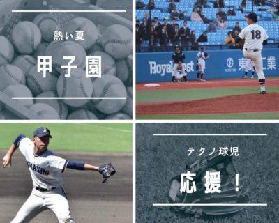 野球と両備テクノモビリティー